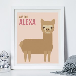 NOTHS_Alpaca_Alexa